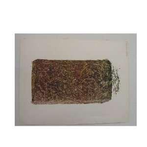 A Brick of Marijuana Poster Mary Jane Dope Weed