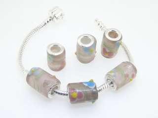 Promotion20pcs Glass Lampwork Beads Fit European Charm Bracelet