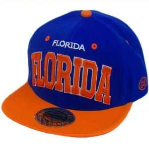MIAMI FLORIDA FLAT BILL BLUE ORANGE CITY HUNTER: Sports & Outdoors