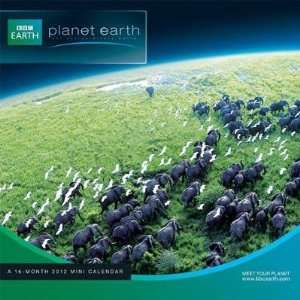 Planet Earth 2012 Mini Wall Calendar