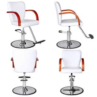 Salon Beauty Equipment Styling Chair Package 4 SC 93W