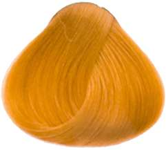 Goldwell Topchic Professional Hair Color (2.1 oz. tube)  9KG
