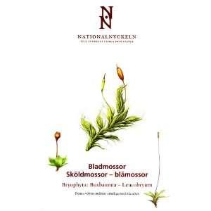 Lars Hedenäs, Karin Wiklund, Pollyanna von Knorring, Stefan Evertson