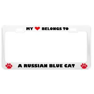 A Russian Blue Cat Pet White Metal License Plate Frame Tag