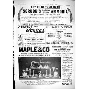 1900 Advertisement ScrubbS Ammonia Tautz Tailors Maple