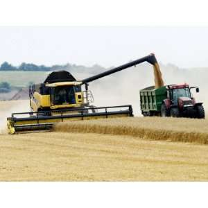 Yellow New Holland Combine Harvester Unloading Grain into