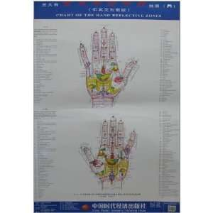 Wang holographic great hand therapy hand clinic charts (4