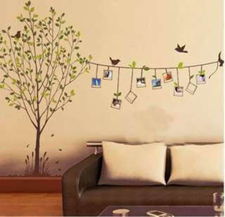 Removable Photo Frame Tree Birds Words Art Mural Wall Vinyl Sticker