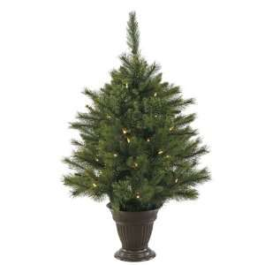 Battery Operated 50 Warm White Italian LED Lights Christmas Tree