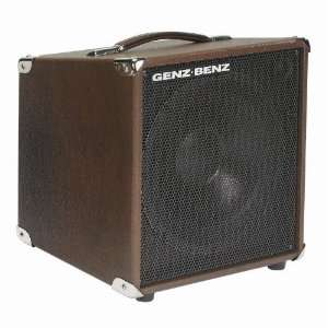 Acoustic Guitar Speaker Cabinet (Brown Straight) Musical Instruments