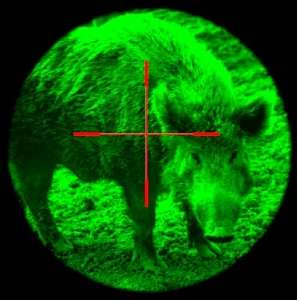 Deer Feeder Hog Light Wildlife Night Hunting Boar Lite HogLight