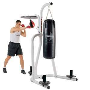 Heavy Bag Stand and Speed Bag Platform