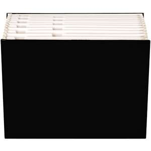 Globe Weis 3/4 Expansion Case File, Letter, Black Office