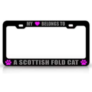 MY HEART BELONGS TO A SCOTTISH FOLD Cat Pet Auto License Plate Frame