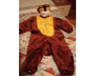 Costume carnevale scoiattolo anni 3/4 a Genova    Annunci