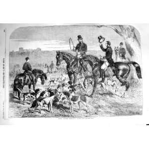 1856 H.R.H. PRINCE ALBERT HARRIERS HUNTING HOUNDS HORSE