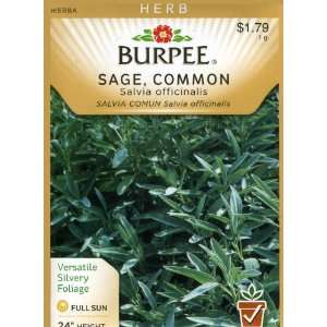 Burpee 66167 Herb Sage, Common Seed Packet Patio, Lawn & Garden