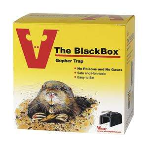 0625 Victor The BlackBox Gopher Trap. Also effective on trapping
