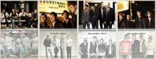 NEW Backstreet Boys BSB Nick Carter Wall Calendar Year 2012
